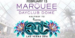 Halfway to EDC - Dayclub Dome, Las Vegas